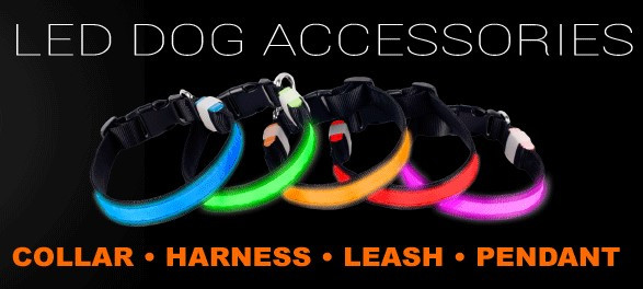 Doglite LED Accessories