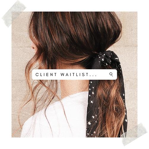 client waitlist (2).png