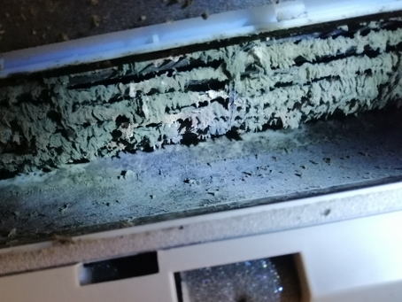 Removing Mould From Your Air Con: Why it's a job for a tradesperson