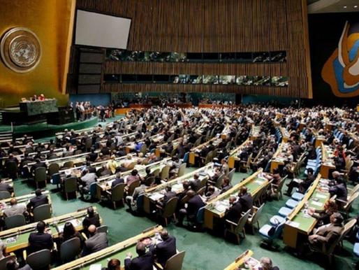 El Comité de Descolonización ONU: importante pero insuficiente