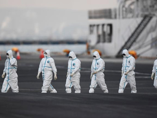 """Isabel Behncke: """"El pánico al contagio, a lo infeccioso, es uno de nuestros miedos más atávicos"""""""
