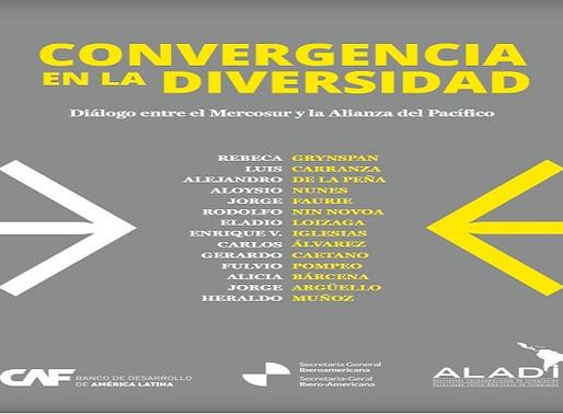Convergencia en la diversidad