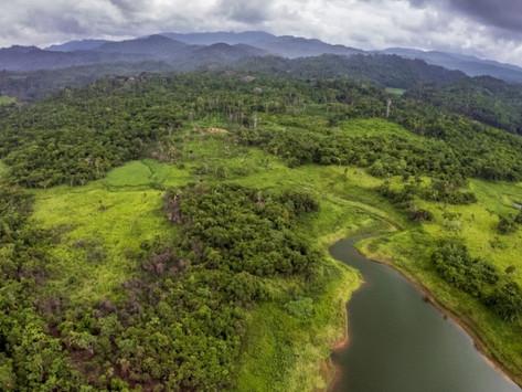 """""""América Latina necesita ayuda para combatir el cambio climático"""", por Lisa Viscidi"""