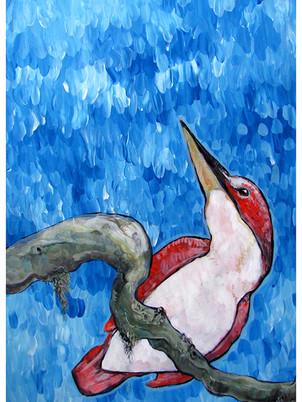 Red Bird in Rain / ATWF