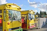 buses (small).jpg