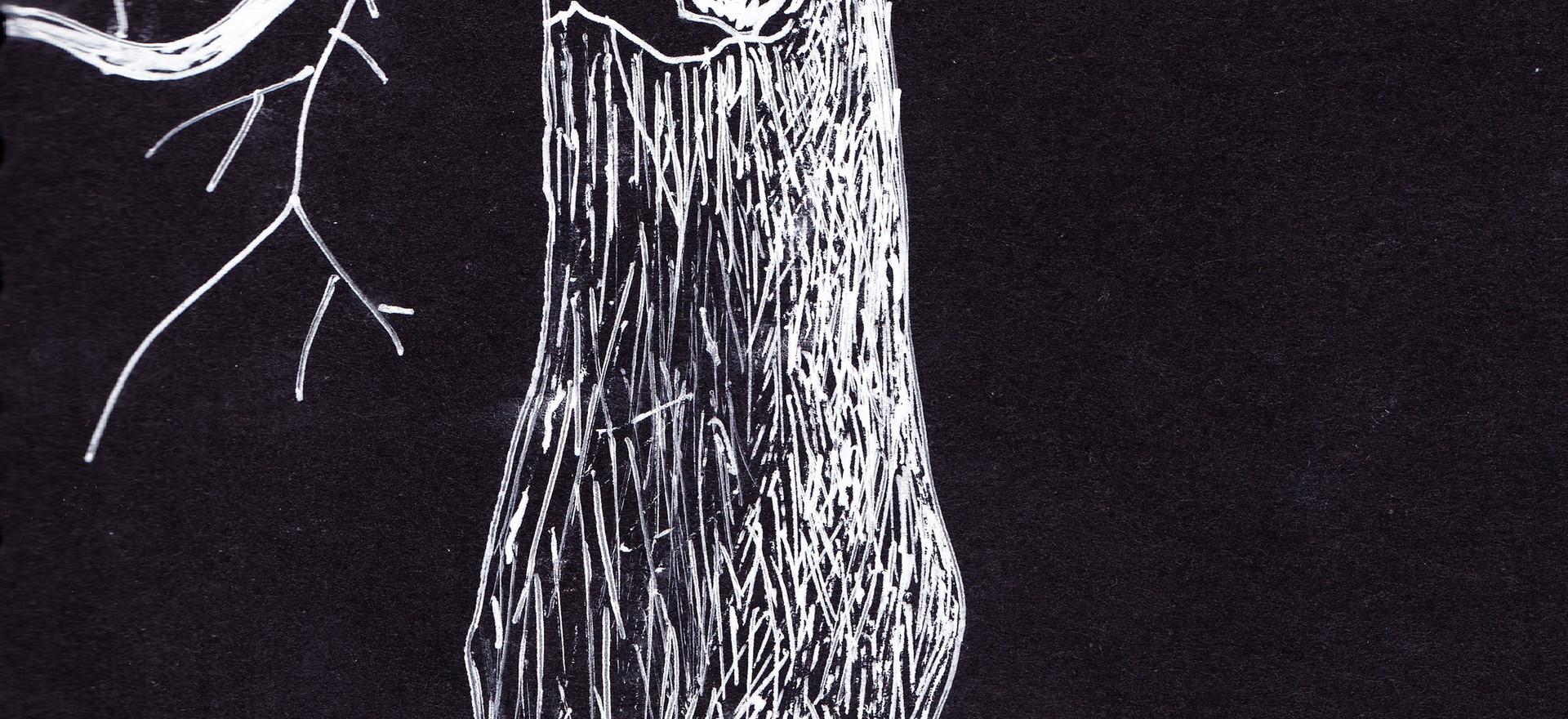 Arbol, 2010,  ink on paper