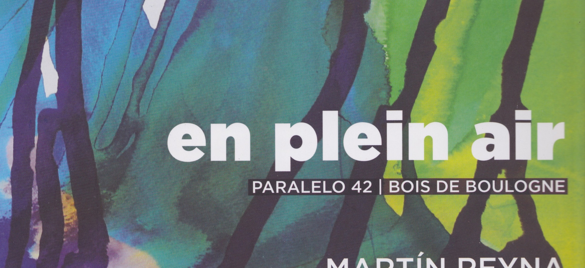 En plein air, 2015, textes: Herminia Mérega, Martín Reyna, Sarah T. Reyna, Horacio Spinetto et Bruno Tessarech; Editions Herminia Mérega, Buenos Aires, Argentine