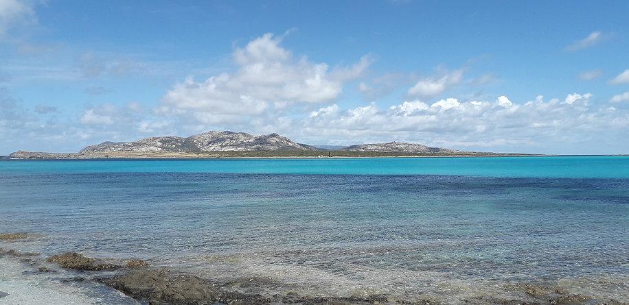 Pelosa Asinara