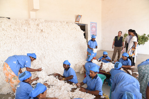 Ginning factory in India