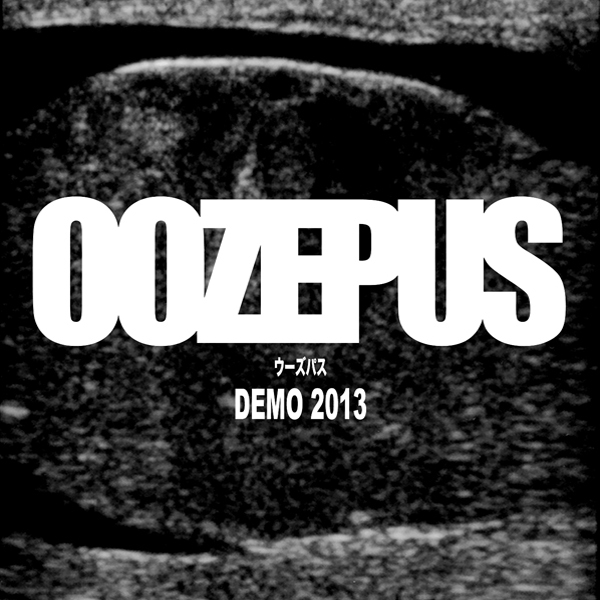"""DEMO 2013"" CDR"