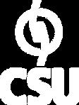 csu-cardsystem.png