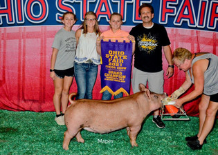 Cadence Gross, Grand Jr. Gilt & Reserve Grand Open Gilt, Ohio State Fair