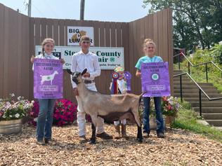 Elijah Weible, Grand Champion Goat, Steuben County 4-H Fair