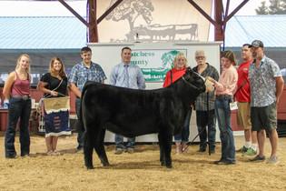 Riley Mahaffey, Grand Champion Heifer, Dutchess County Fair 2021.jpeg