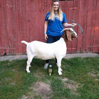 Jenna Timmer, Reserve Grand Champion Goat, Ottawa County Doe Show