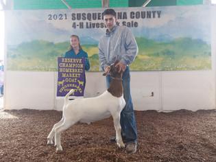 Ryan Wright, Reserve Grand Champion Market Goat, Susquehanna County 4-H Livestock Sale