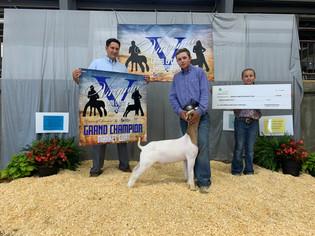 FOC_Grant Grubb_GC Goat_Virginia Lamb and Goat Symposium.jpeg