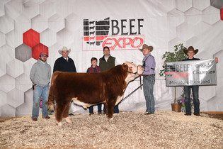 Isaac Wiley_Grand Champion_Ohio Beef Exp