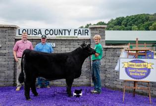 Will Hoopes, Supreme Grand Champion Breeding Heifer, Louisa County Fair 2021