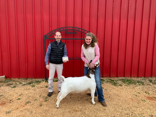 Abby Broxton, Reserve Grand Champion Boer, Stephens County Fair 2021.jpg