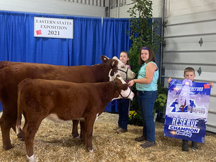 Jennifer Smith, Reserve Champion Cow_Calf, Eastern States Exposition 2021.jpeg
