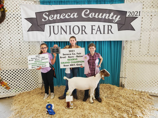 Olivia Fitch, Reserve Grand Champion Goat, Seneca County Fair