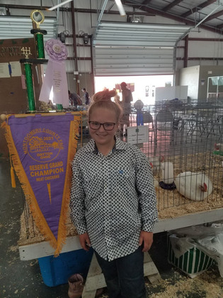 Skyler Osswald, Reserve Grand Champion Chickens, Mongtmery County Fair