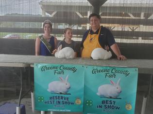 Allison Pecjak, Best in Show & Reserve Grand Champion Rabbit, Greene County Fair
