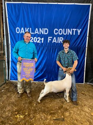 FOC_Peter Sardo_RGC Goat_Oakland County Youth Fair.jpeg