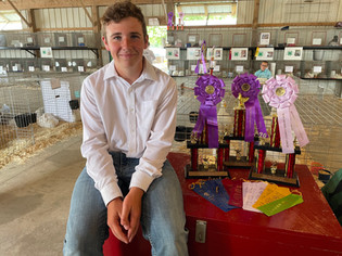 Gavin Podach, Grand and Reserve Grand Champion Poultry, Henry County Jr. Fair