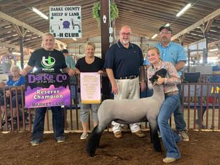 Alexis Wilcox, Reserve Grand Champion Lamb, Darke County Fair