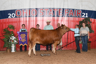 Hailey Cornett, Grand Champion Heifer, Ohio State Fair 2021.jpeg