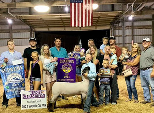 Gavin Richards, Grand Champion Market Lamb, Wood County Fair