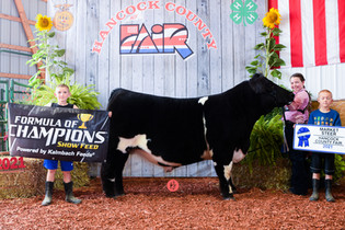 Claire Kramer, Grand Champion Market Steer, Hancock County Fair 2021.jpg