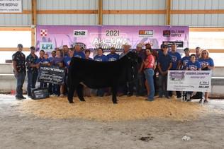 Rylie Timm, Reserve Grand Champion Breeding Heifer, All Iowa Showdown 2021