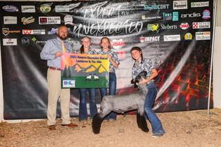 FOC_Elizabeth Shatto_Reserve Champion market lamb_Breeders Classic.jpg