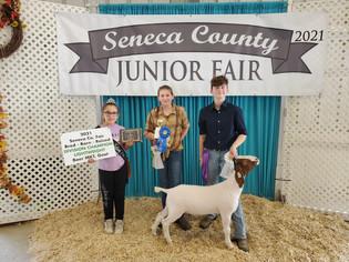 Samantha Fitch, Grand Champion Goat, Seneca County Fair