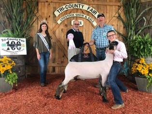 Phoebe Pownell, Reserve Grand Champion Lamb, Tri-County Fair