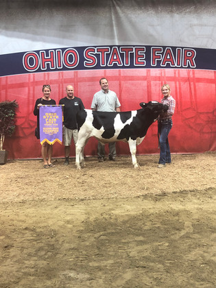 Alexis Shoop, Reserve  Grand  Champion Dairy, Ohio State Fair