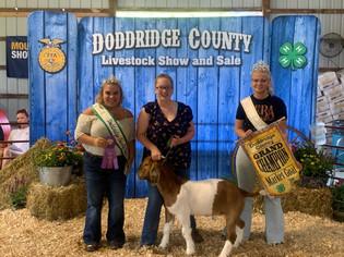 Chloe Mayle, Grand Champion Goat, Doddridge County 4-H Livestock Show