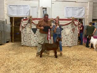 Summer Koontz, Reserve Grand Champion Goat, CMR Farm Show