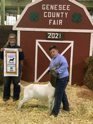 Courtney Loik, Grand Champion Market Goat, Genesee County Fair 2021