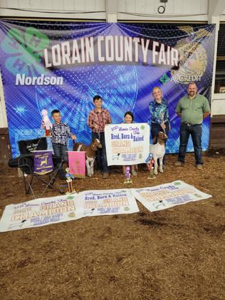 Colton Bremke, Reserve Supreme Champion and Reserve BBR Champion Goats, Lorain County Fair
