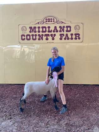 Alexis Wagner, Reserve Grand Champion Lamb, Midland County Fair
