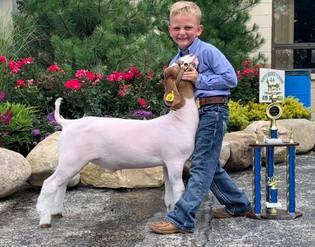 Bentley Richards, Reserve Champion Market Goat, Pemberville Fair