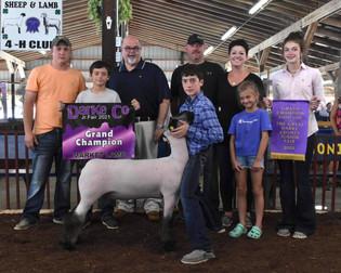 Caden Hanes, Grand Champion Market Lamb, Darke County Fair