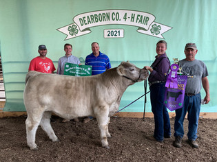 FOC_Kaylan Galey_Grand Champion Steer_Dearborn County 4-H Fair .jpeg