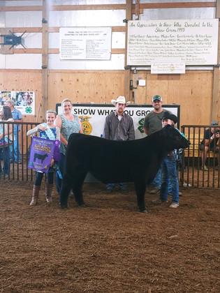 Westin Pletcher, Grand Champion Feeder Calf Steer, Morgan County Fair 2021.jpeg