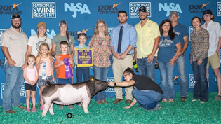 Kyla Williams, 5th Overall Crossbred Gilt, National Jr. Summer Spectacular 2021.png