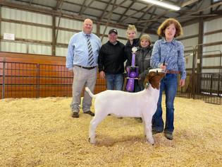 Brylyn Bryant, Grand Champion Meat Goat, Ashland County Fair 2021.jpeg